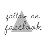 lille trekant mint 290 px facebook